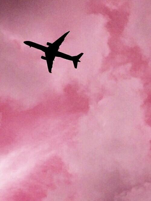 pinkairplane.jpg