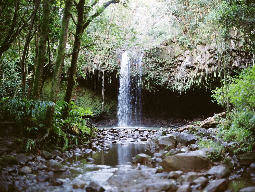 Maui Waterfall Elopement_0003.jpg