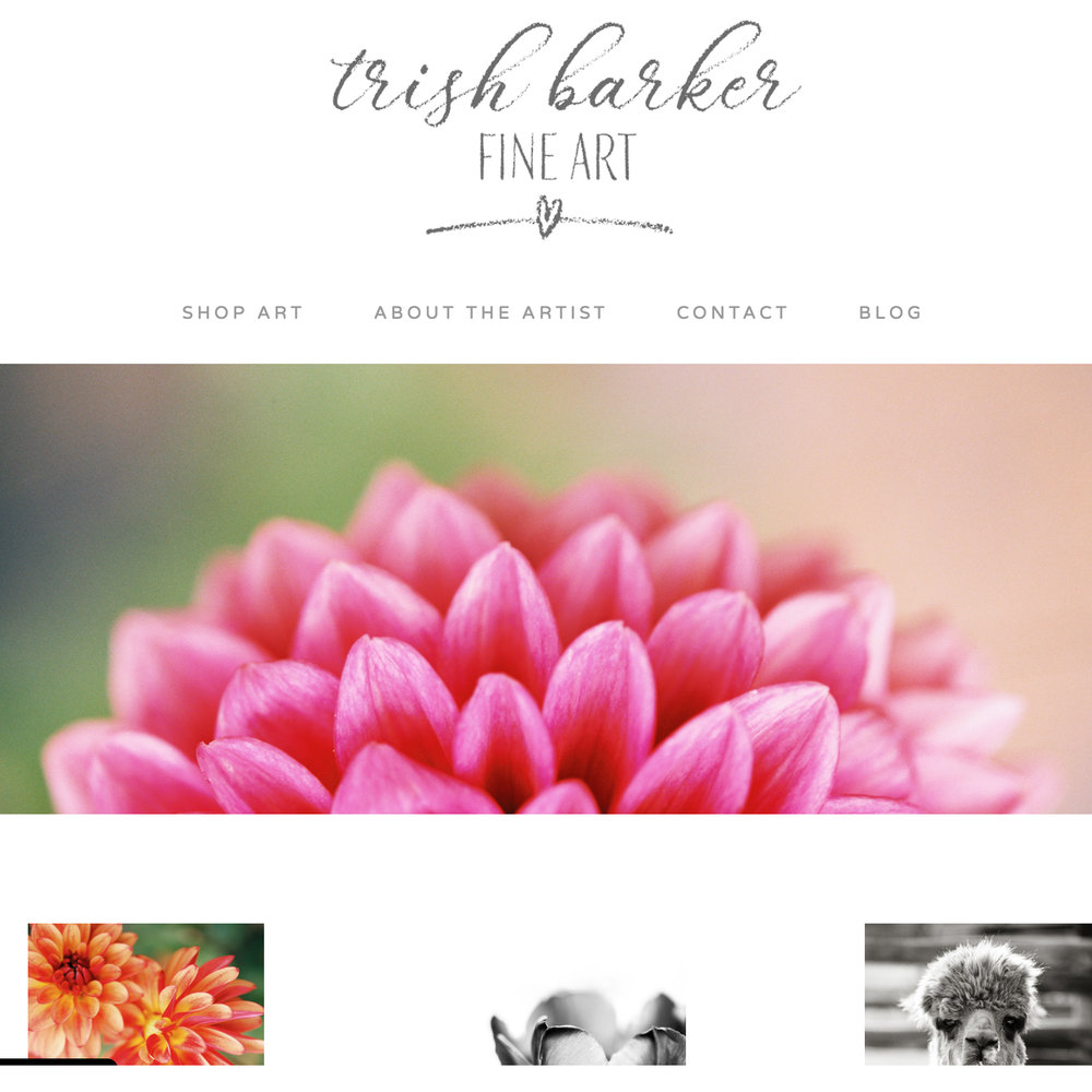 trish-barker-fine-art-photography-for-sale