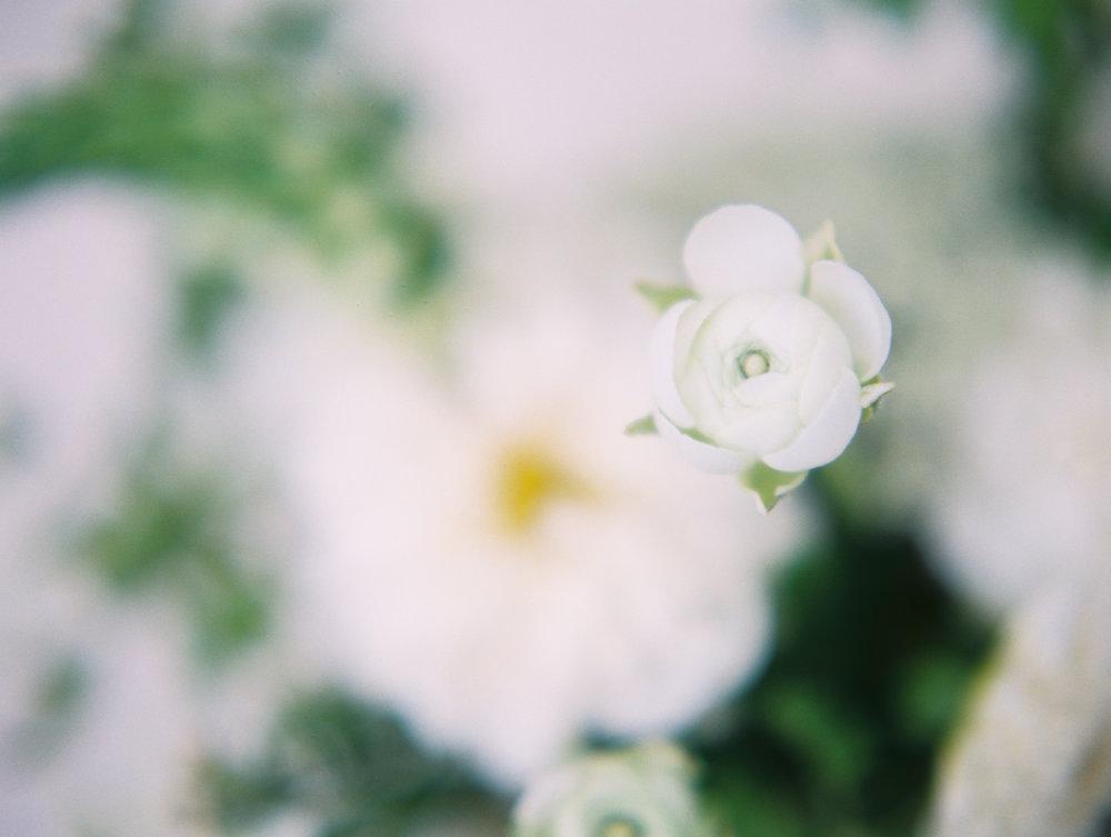Flora-Centerpieces198.jpg