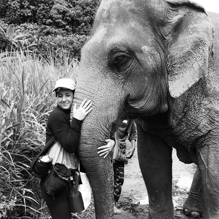 I stood in an elephant fart once. It blew my hair back and I got dust in my eye. Elephant butt dust. True story. -