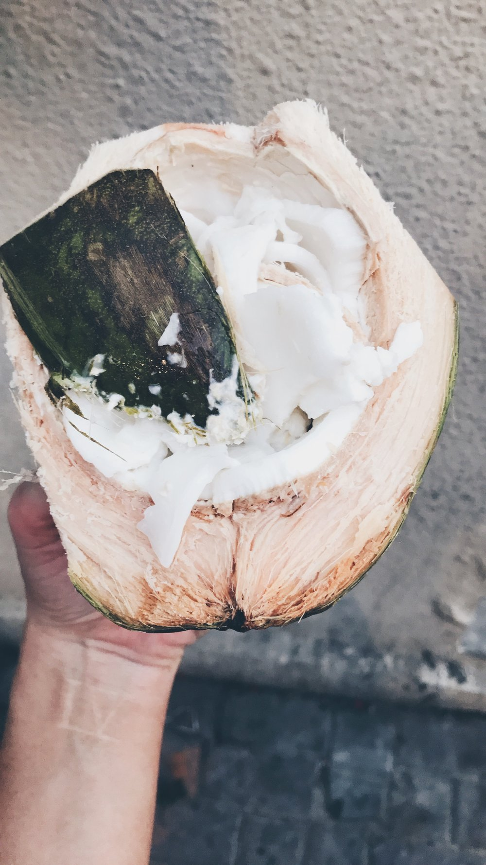 DID YOU KNOW THAT coconut meat HELPS BUILD LEAN MUSCLES + REUCES BELLY FAT -