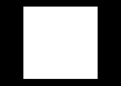 NBC Logo_White.png