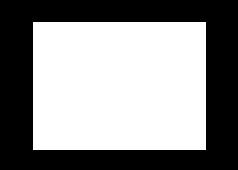 Saks Logo_White.png