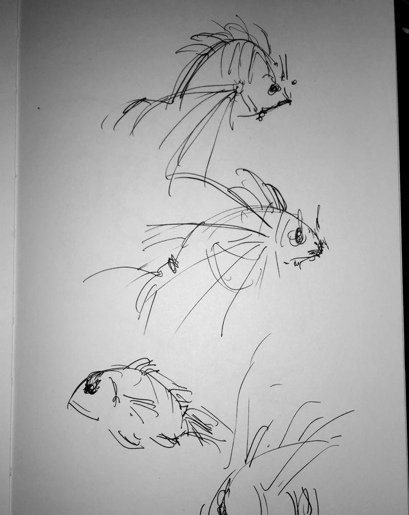 19_fish01.jpg