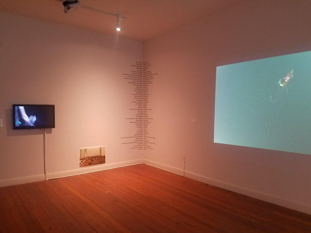 La muestra  Una piedra y la lluvia , en Lawndale Art Center, Houston, TX hasta el 23 de abril 2017.