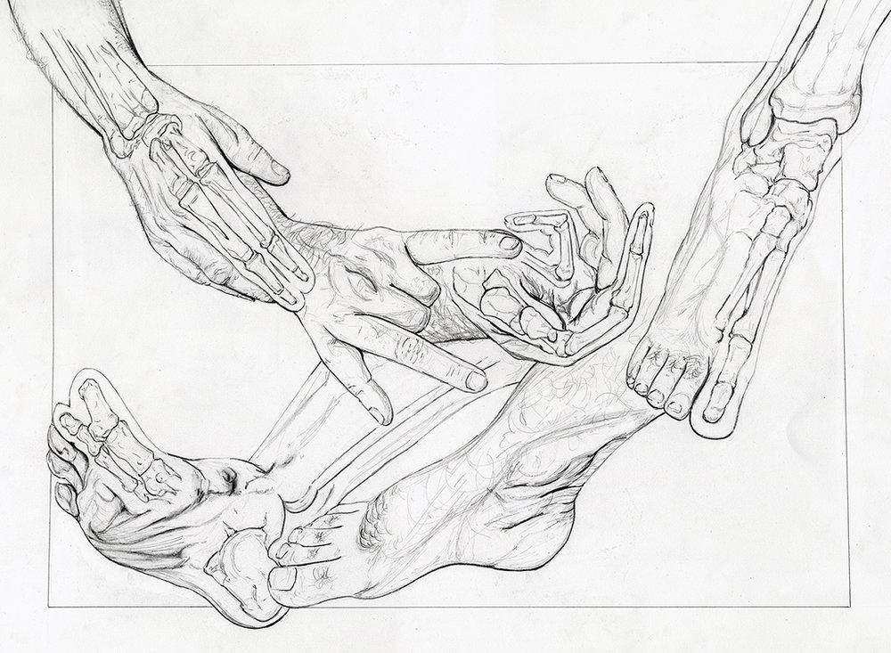 Hand/Foot Skeletal Anaylsis  Graphite 2015