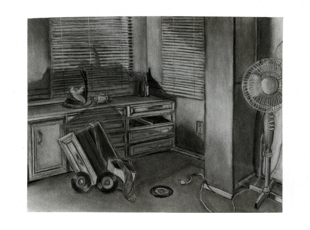 Additive/Subtractive Charcoal 2014