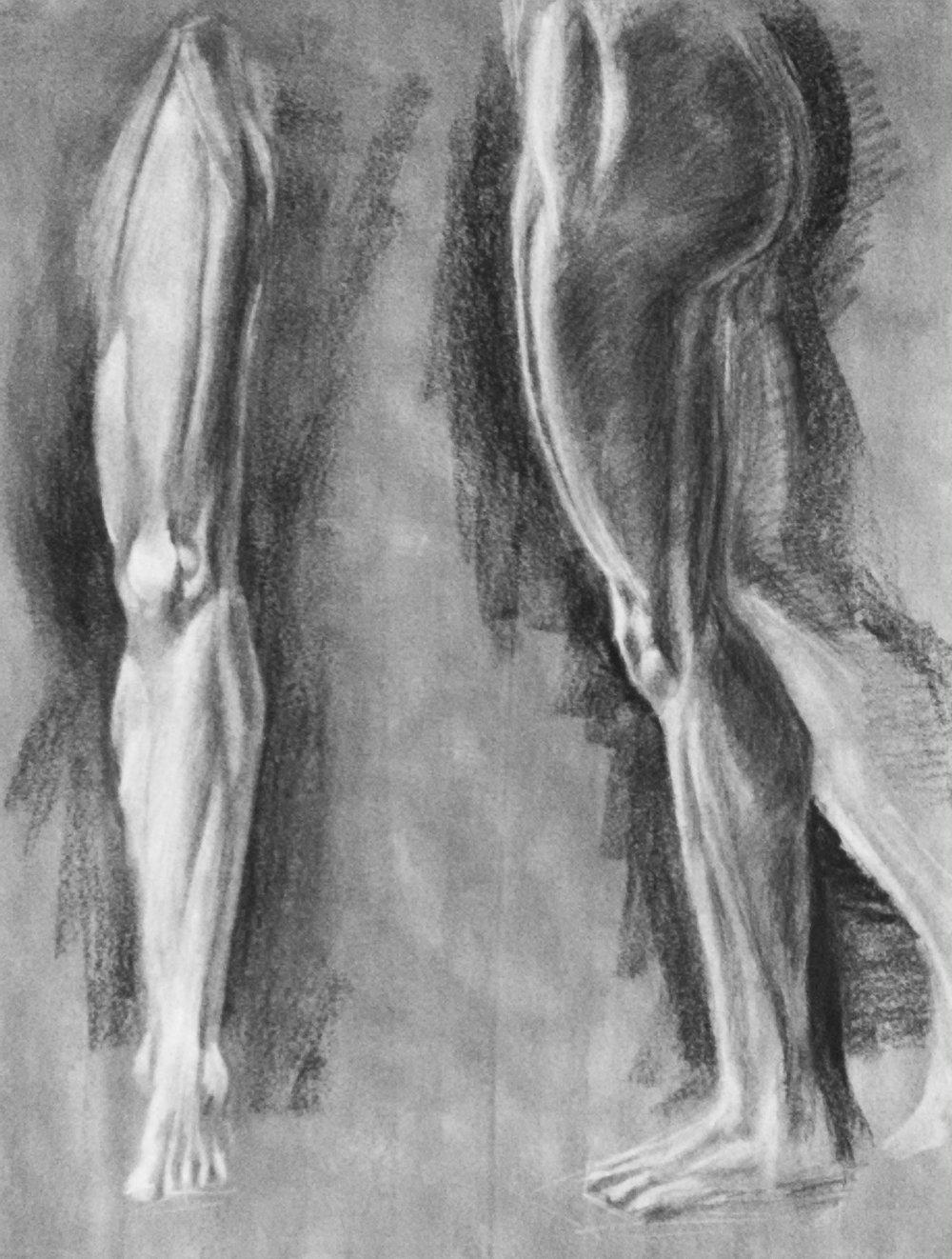 Leg Muscle Study  Charcoal 2014