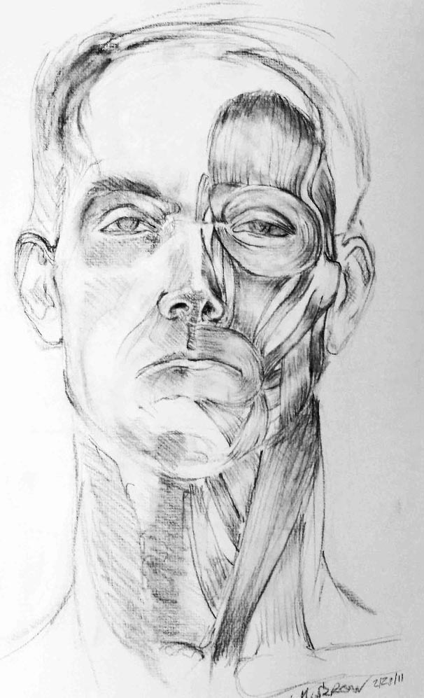 Figure Drawing II  Direct Observational Facial Muscle Study  Graphite  2011
