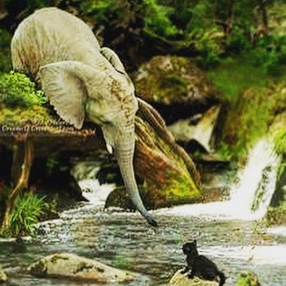 If this doesn't pull at your heartstrings, then I don't know what will. This elephant is saving a stranded kitten. #elephants #beautiful #beautifulsight #rescue #intelligent #intelligentanimals #incredible #love #nature #takenotes #foodforthought