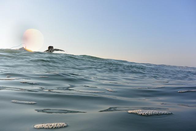 surf-3792036_640.jpg
