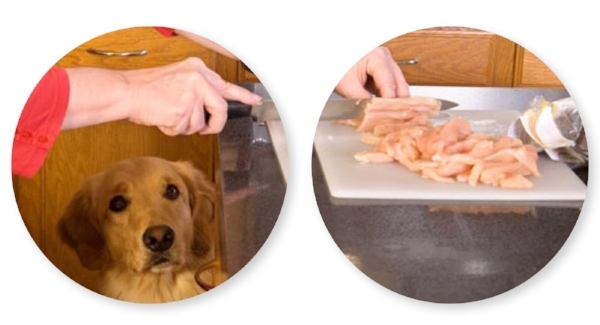 The dangers of homemade dog food the researchers analyzed 200 homemade recipes 134 recipes were from veterinary textbooks and pet care books 4 forumfinder Image collections