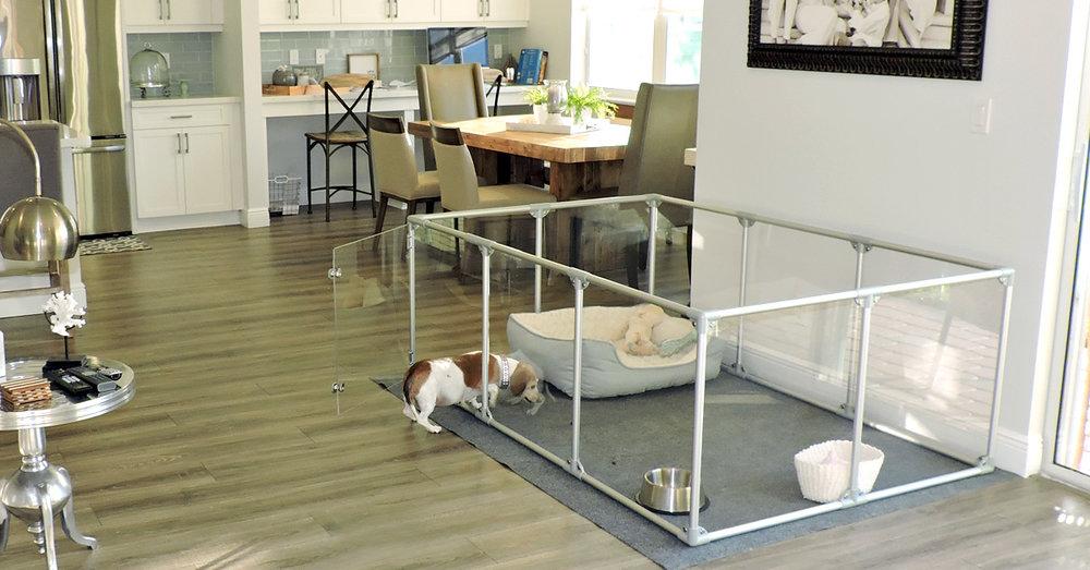 Dog-in-Doorway-FINAL 1200x628 FB.jpg