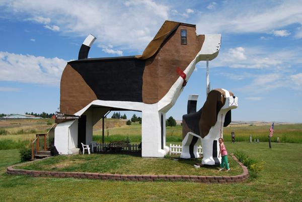 Dog-Bark-Park-Inn-Sweet-Willy-01.jpg