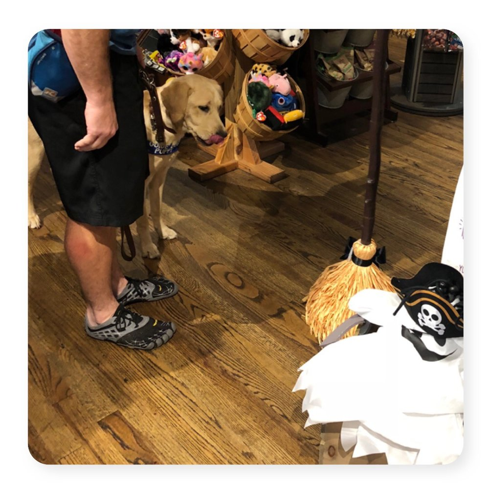 Saga in Cracker Barrel checking out the talking broom.