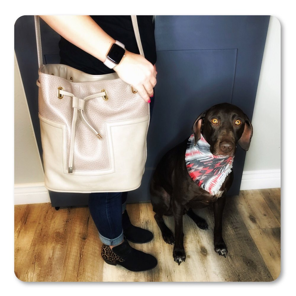 Even though this handbag offers lots of space, Chelsea won't fill it with treats… Gunner might be a little sad about it.