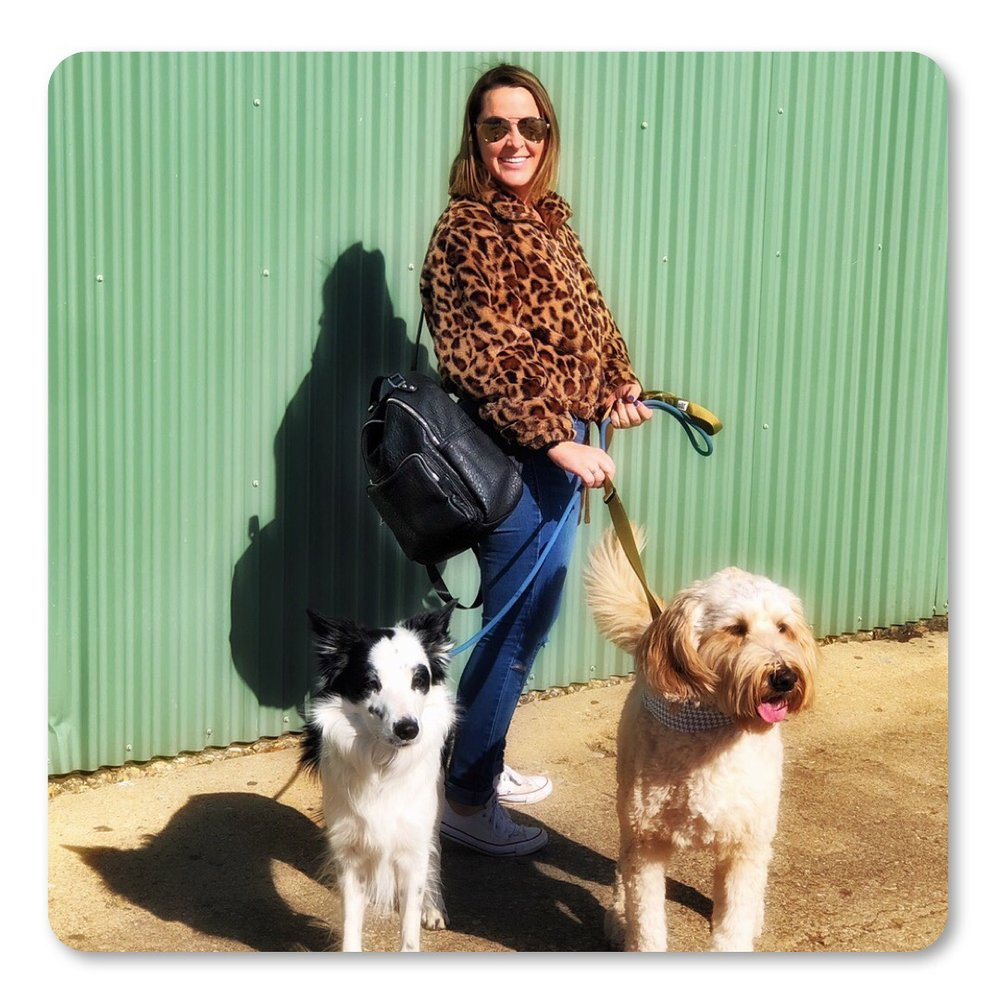 Emily, Pharrell, and Dallas taking a stroll in Big D. Walking multiple dogs is easy with this gorgeous backpack!