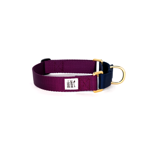 Collar_Martingale_PurpleNavy_1_600x600.png