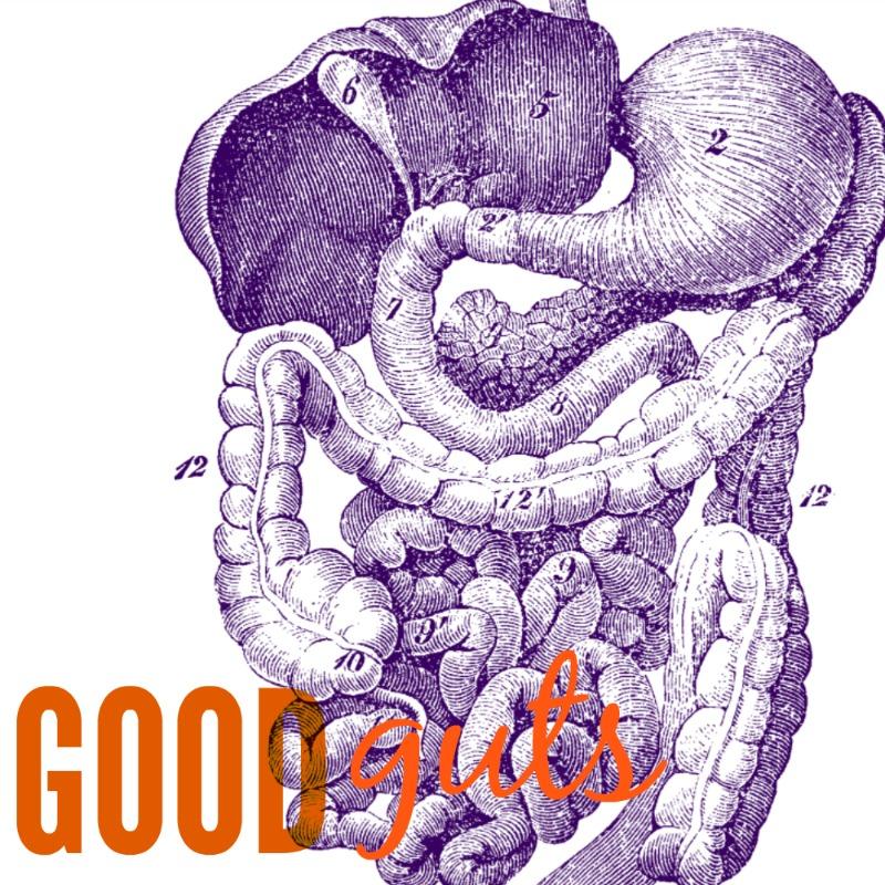 good guts image.jpg