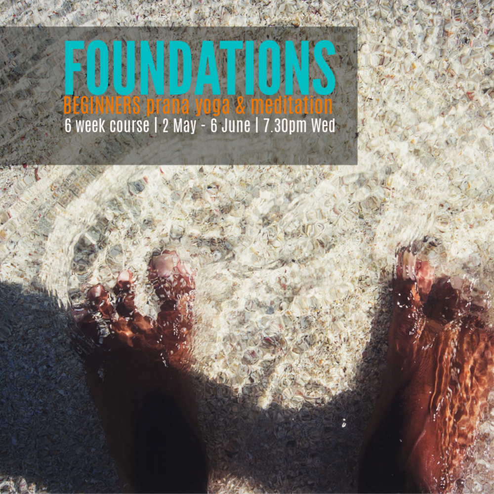 Foundations - a course for beginners and beyond.Ground your yoga practice. Grow your knowledge. Build foundations of practice & experience in yoga & meditation.Begin or enhance your in class and at home yoga experience while you support your wellbeing.