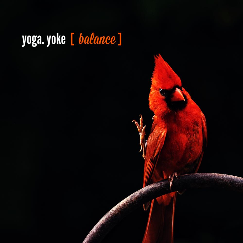 yoga balance.png