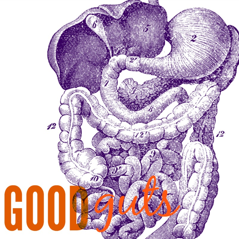 good+guts+image.jpg