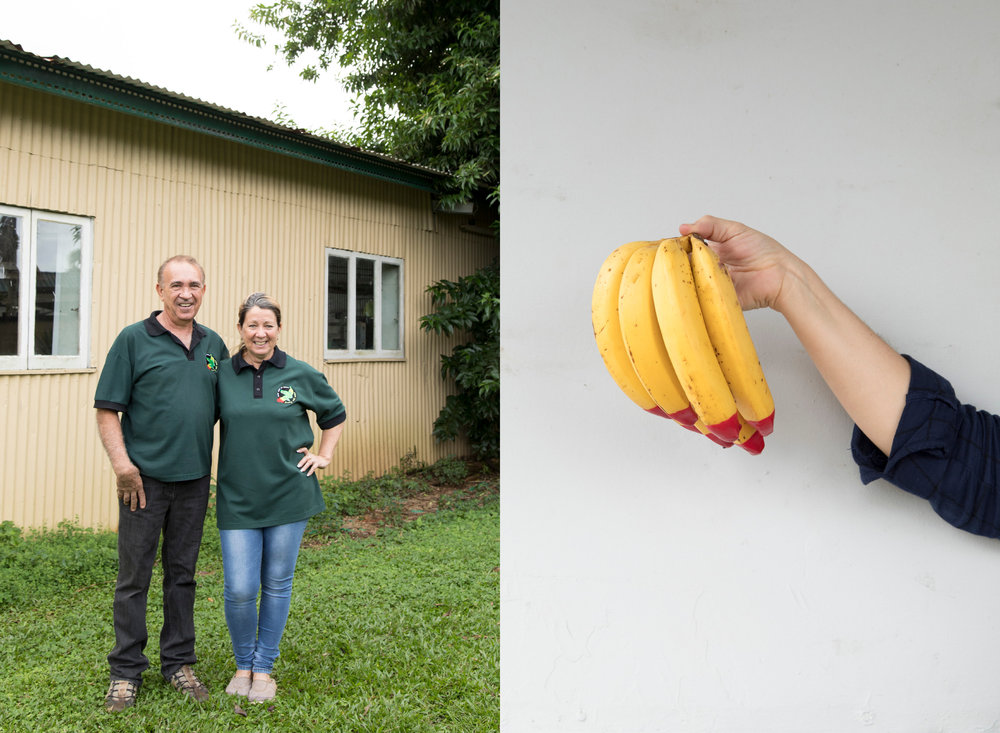 WillWorkForFood_EcoBananas10.jpg