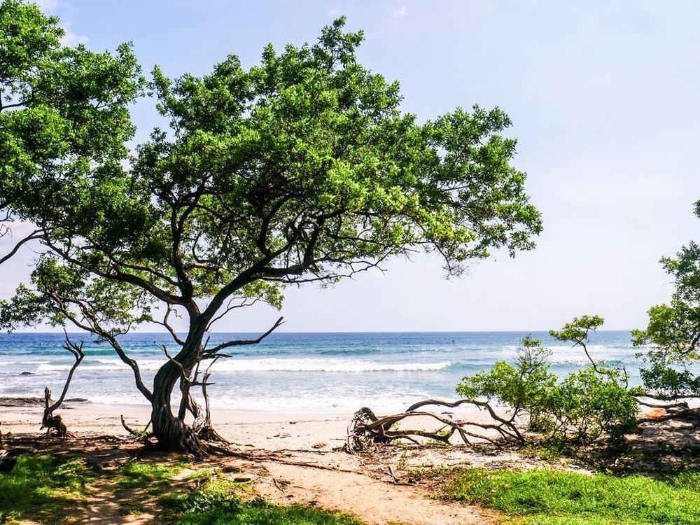 Beach Pic 1.jpg