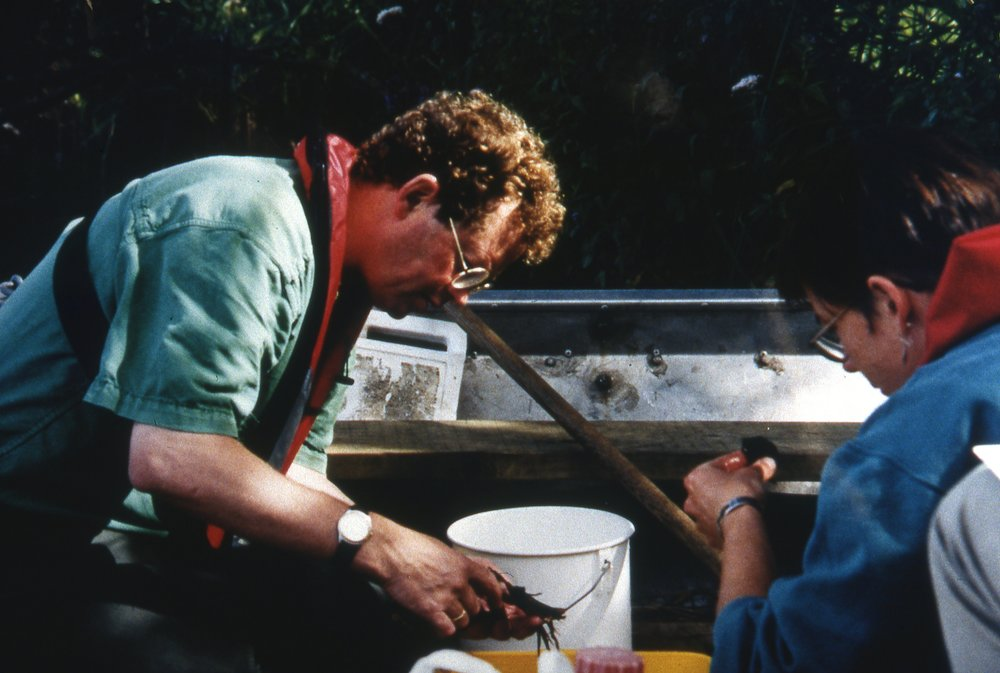 Me and Andrea Kelly sampling bugs on Barton Broad .jpg