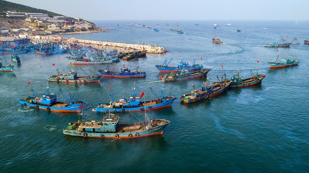 'The seas have to be healthy too' … vessels set sail after a four-month fishing ban on China's Yellow Sea and Bohai Sea. Photograph: Fang Yi/China News Service/VCG