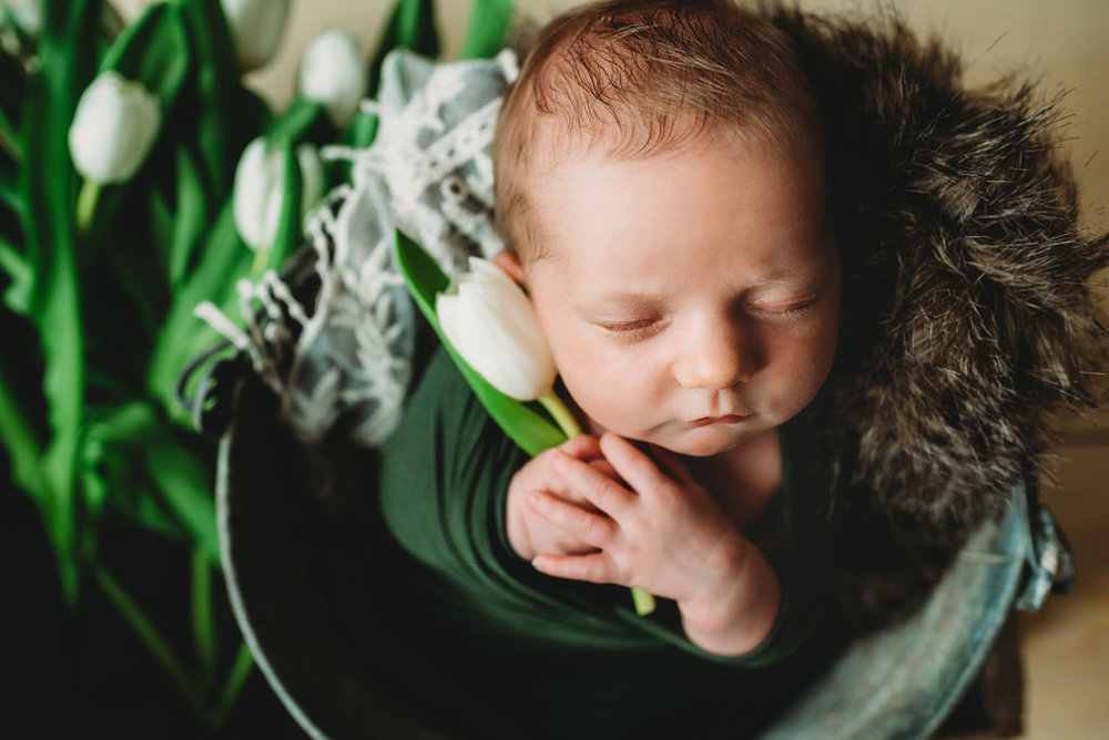 Baldwin Newborn Session