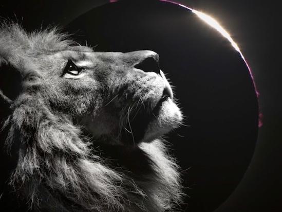 leo+lion+eclipse.jpg