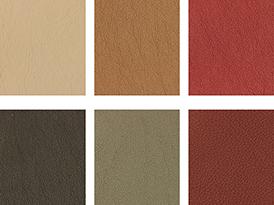 Upholstery Choices.jpg