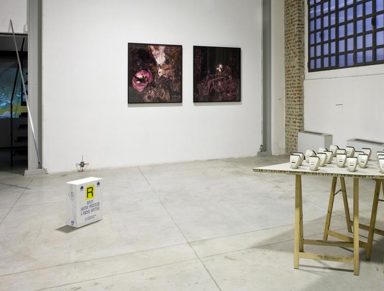 Untitled #02, 2010 and Untitled #03, 2010 - photo: Zeno Zotti  Il raccolto d'autunno continua ad essere abbondante, 2010