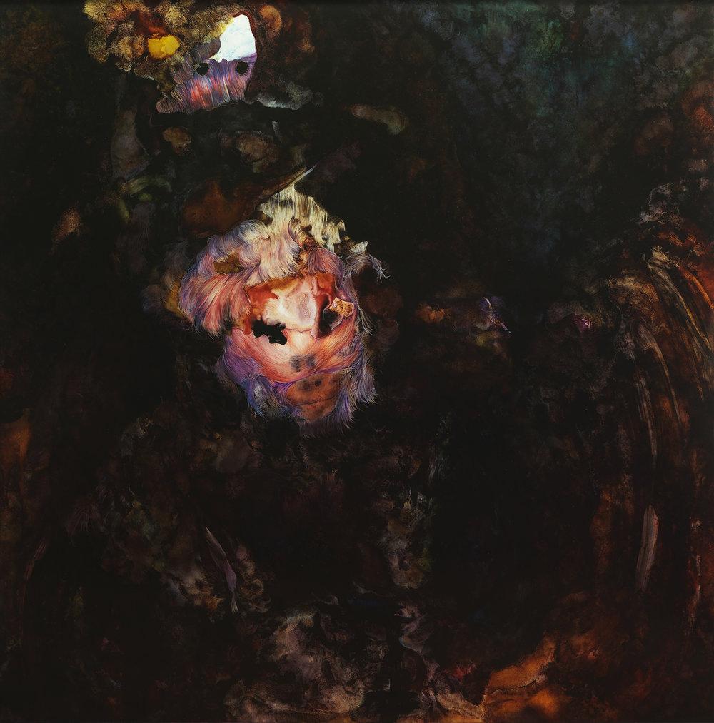 Untitled#06, 2011