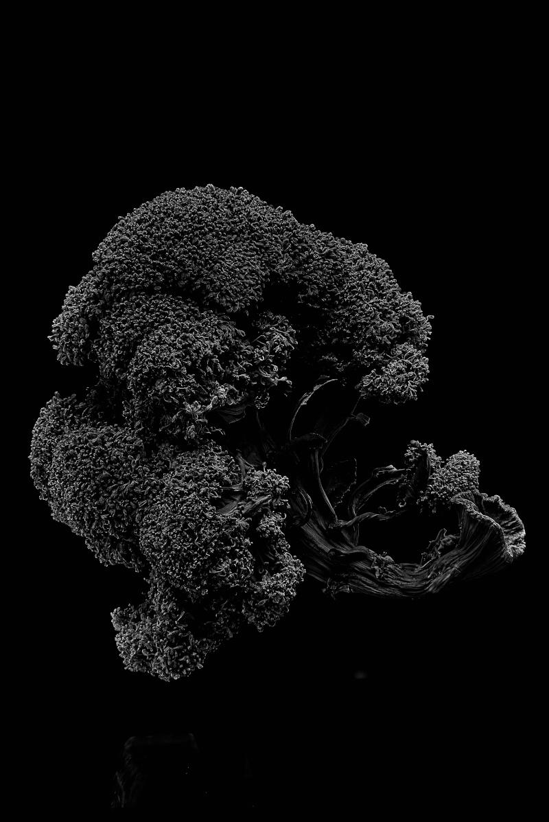 Broccoli_12.jpg