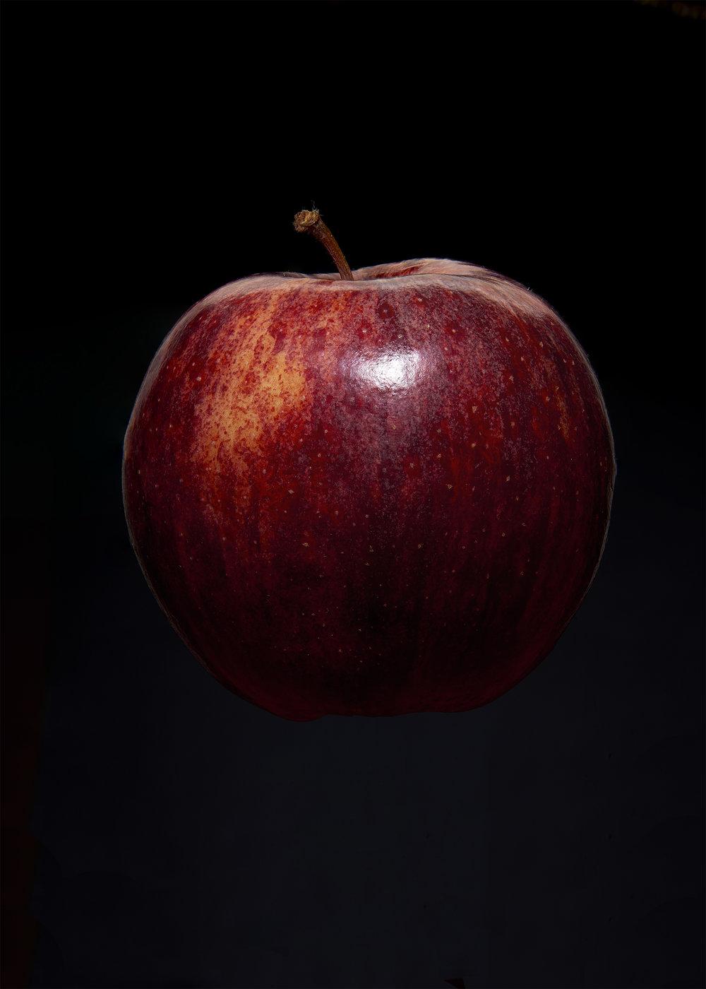 apple David in den Bosch