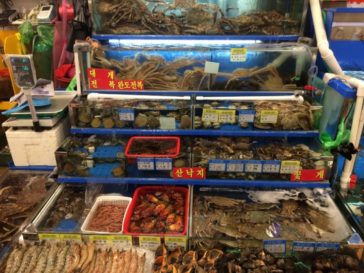 Seafood displayed in aquariums (Oct, 2016)