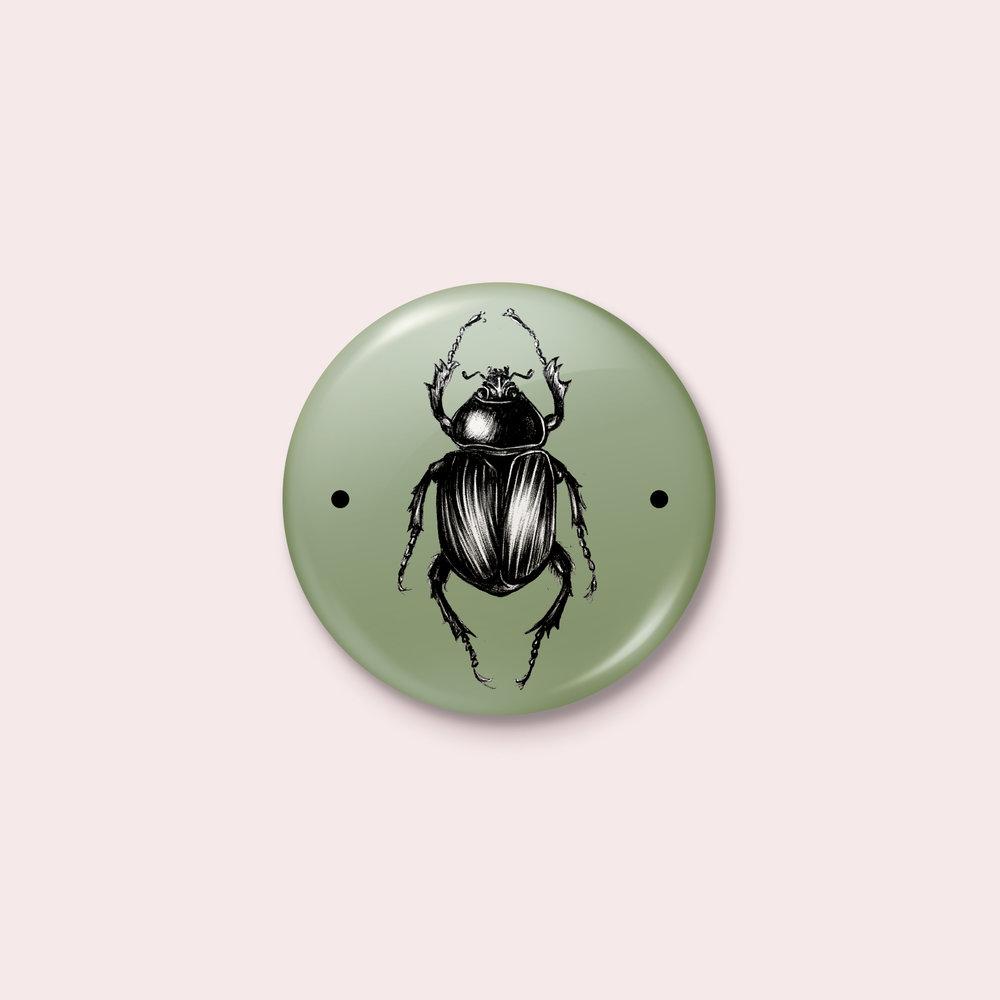 Taxidermy pins - CHF 1.50/ pièce