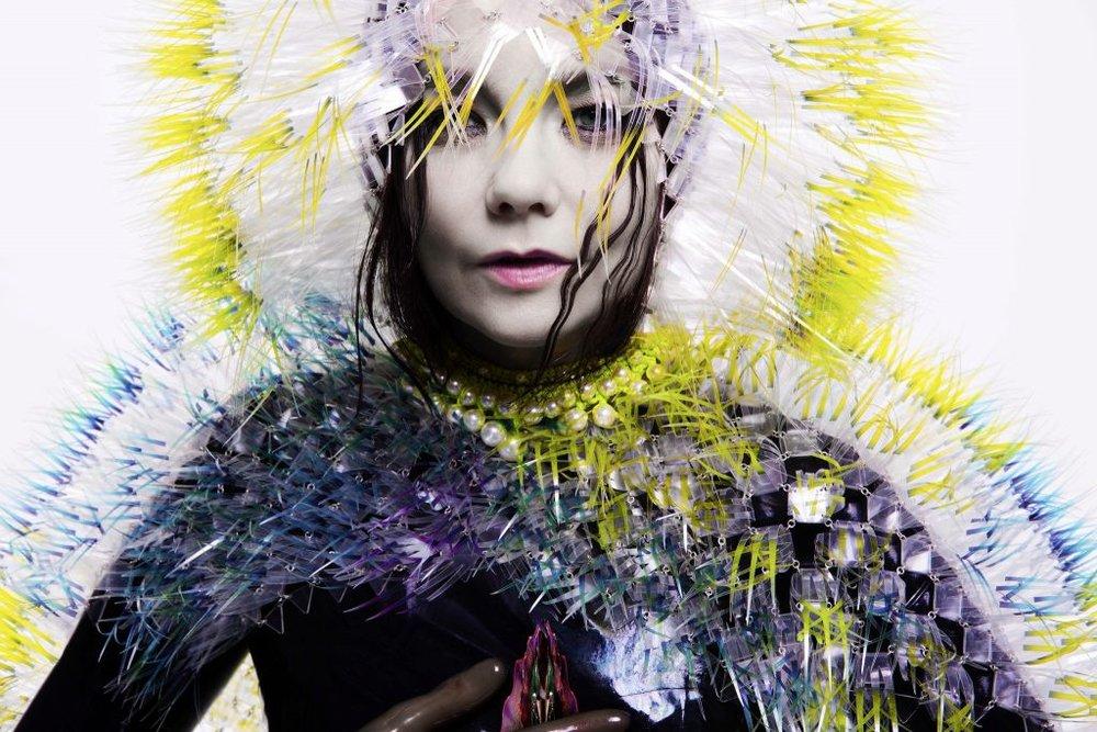 Björk Digital -Vulnicura | Photography Courtesy of Radio Org