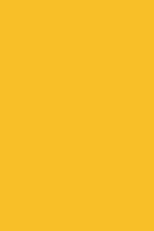 Citrus_Chic-3.jpg