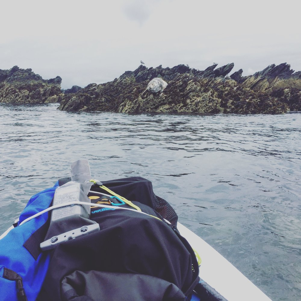 SUP circumnavigation | Stand up Paddleboarding to Rhoscolyn, Anglesey