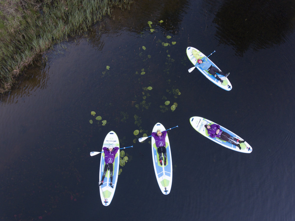 Floating around on the water lilies | Night SUP | Psyched Paddleboarding |