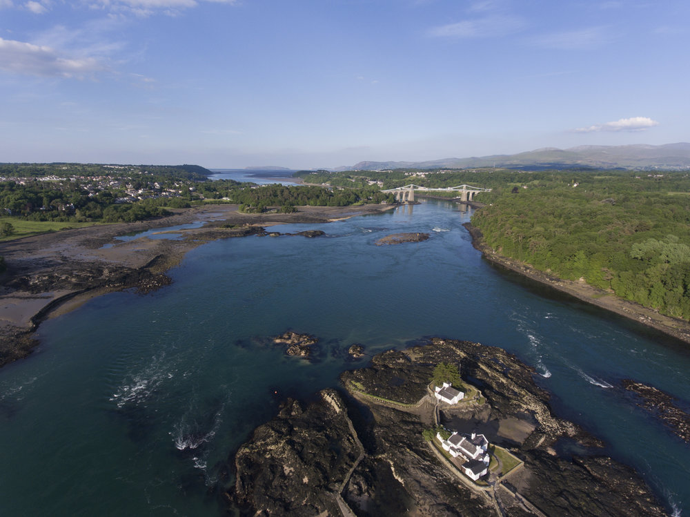 SUP Safari | Anglesey | Psyched Paddleboarding