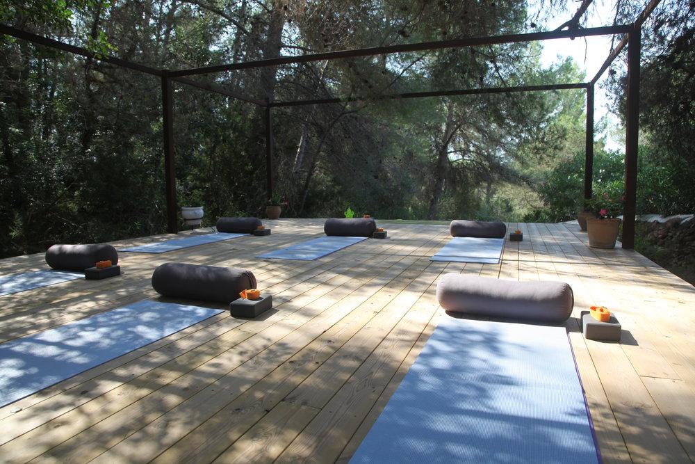 YTR-Yoga platform.JPG
