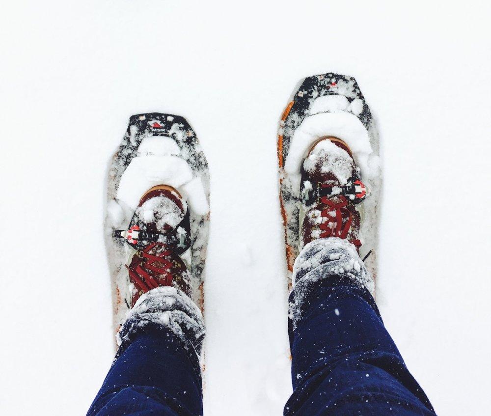 Tahoe Snowshoe Tour