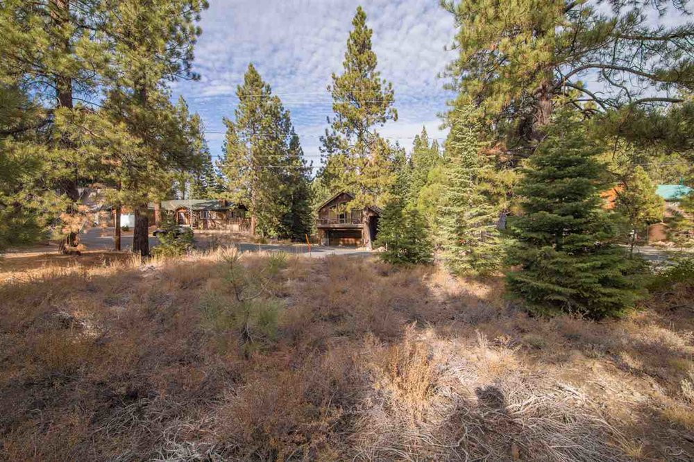 OFF THE MARKET: Beautiful Lot Adjoining National Forest