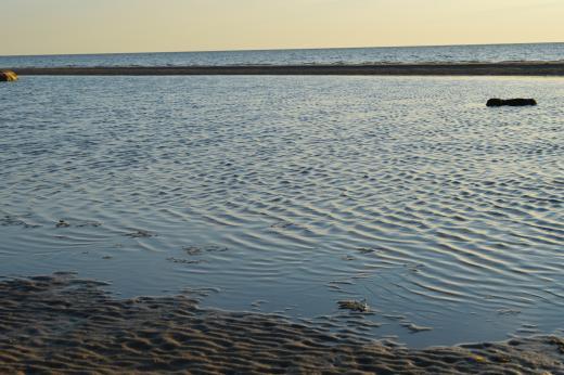 Meren ranta kesällä 2015