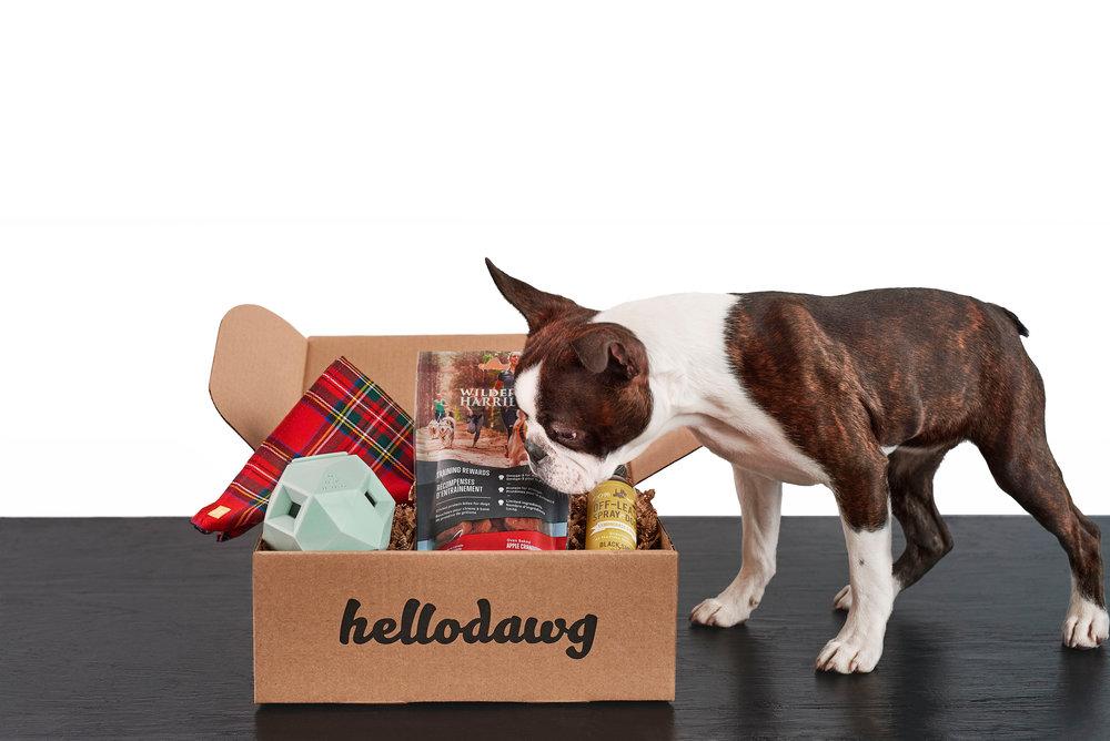 LE CONCEPT - Nous sommes tous à la recherche de ce qu'il y a de mieux pour notre chien : des produits résistants, pratiques et santé mais jamais ennuyants.Les boîtes hellodawg sont conçues afin de vous permettre de passer plus de temps à jouer ensemble :-Chaque boîte surprise hellodawg contient 4 produits parmi ces catégories : des gâteries santé, des objets à mâcher, des jouets interactifs et des produits d'hygiène canine.-Aucun abonnement : vous êtes libre d'acheter la boîte qui vous convient, quand vous voulez !-Livraison partout au Canada avec Postes Canada.Pour s'assurer que votre animal soit comblé, notre équipe teste chacun des produits que l'on retrouve dans nos boîtes.
